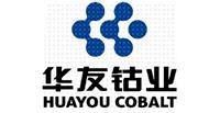 中环化工合作伙伴-衢州华友钴新材料有限公司